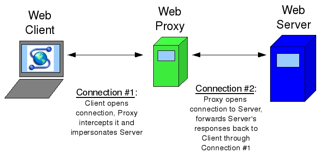 Proxy web